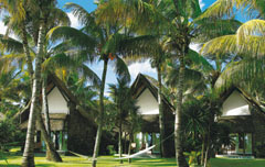 La Pirogue Resort honeymoon