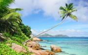 Huwelijksreis Seychellen - Honeymoon bounty eiland met palmbomen en witte stranden