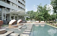 Protea OR Tambo Zuid-Afrika Johannesburg
