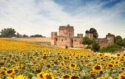 Huwelijksreis Andalusië honeymoon