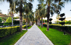 Alanya huwelijksreis Hotel Royal Garden Select honeymoon