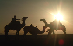Honeymoon rondreis huwelijksreis dubai Woestijn