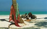 Honeymoon Zanzibar Huwelijksreis