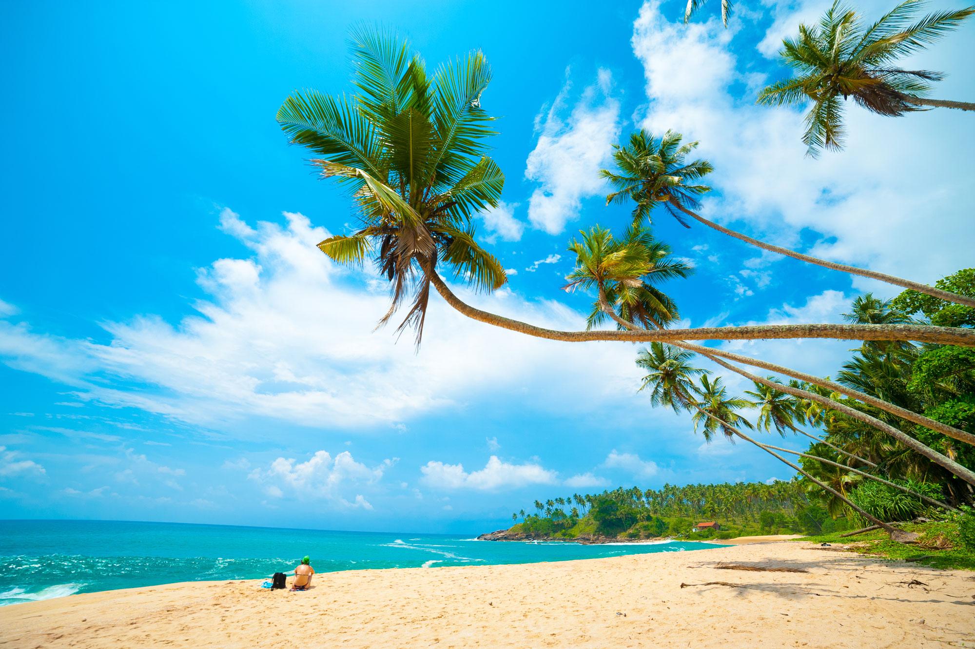Het romantische en paradijselijke strand van Sri Lanka