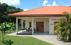 Surinat Suriname
